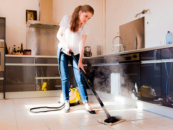 Steam-cleaner-home-1