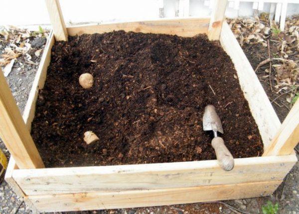 kompost-s-torfom