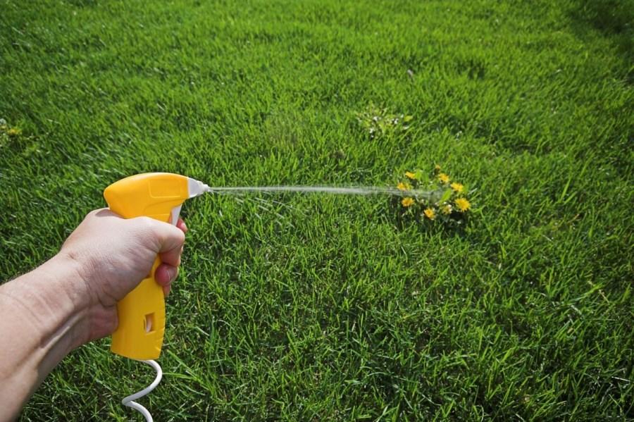 Картинки по запросу водка Поможет удалить сорняки