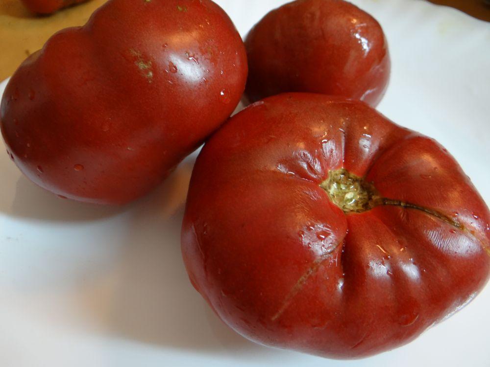 Картинки по запросу помидоры сорта Аппетитный