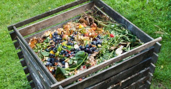 komposts-darzs-komposta-kaudze-50403817