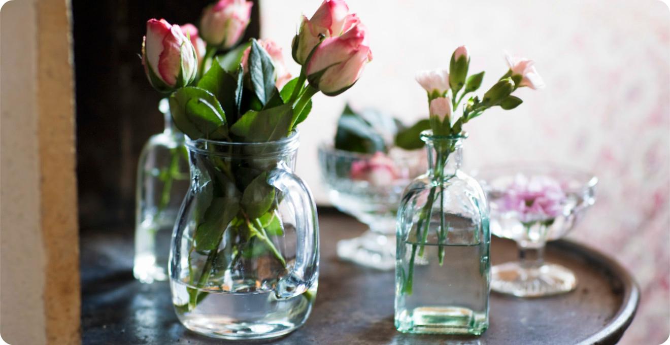 Картинки по запросу Водка поможет продлить жизнь цветам в вазе