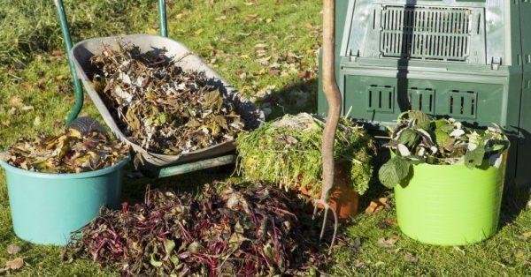lapas-vecie-augi-kompostesana-komposts-komposta-kaste-darza-darb-48048749