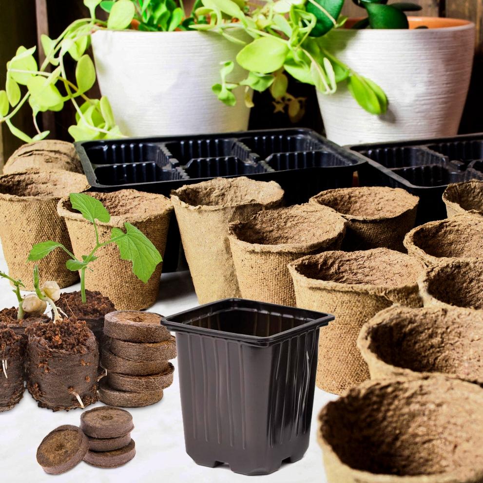 Картинки по запросу Как пользоваться торфяными таблетками для выращивания рассады