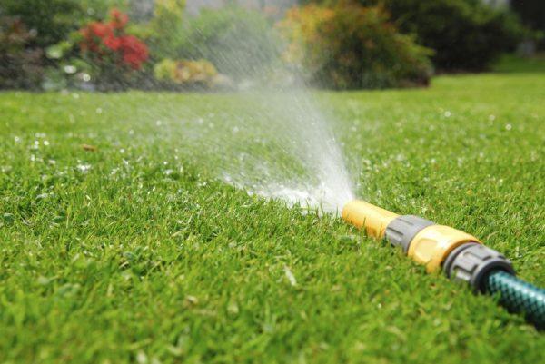 lawn-watering-1