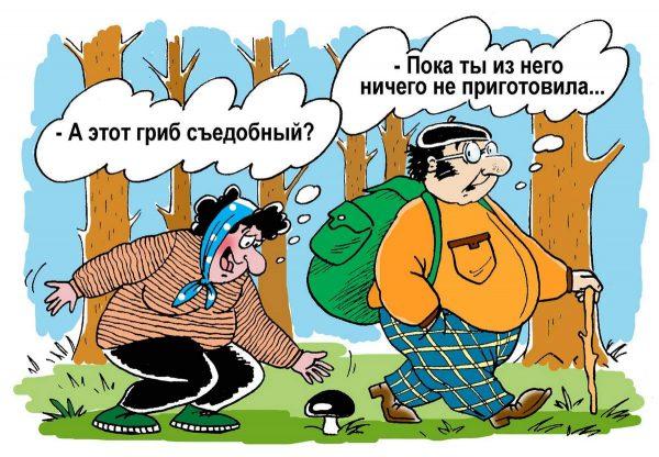 otravlenie-gribami-simptomy-i-pervaja-pomoshh-gribnikoff ru-003