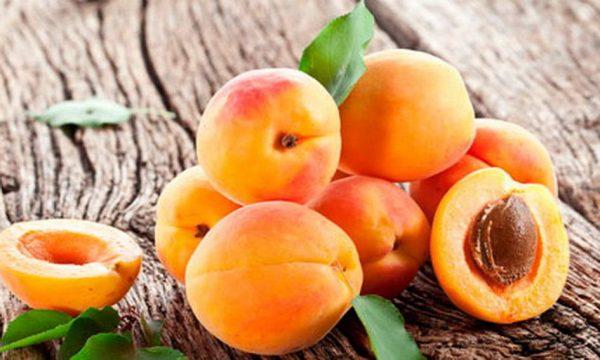 plody-krasnoshchekogo-abrikosa