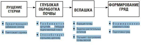 KLASSICHESKAYA-SHEMA-PODGOTOVKI-POCHVY-PERED-POSEVOM-morkovi