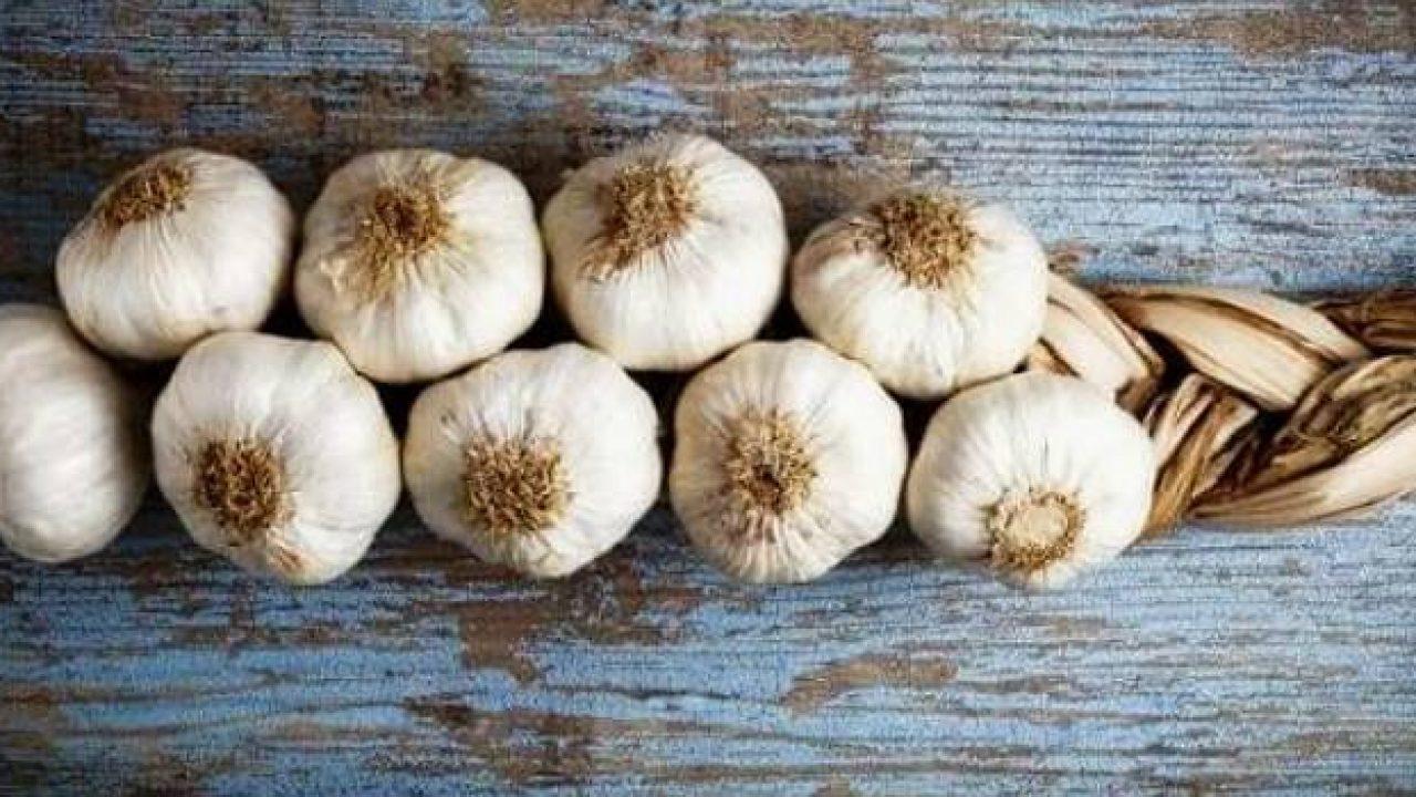 Картинки по запросу Как сохранить лук и чеснок в домашних условиях до весны?