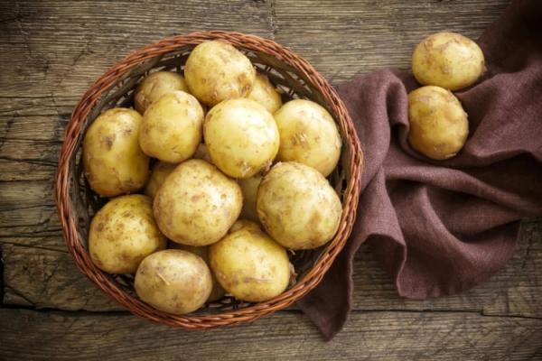 Kartofel-