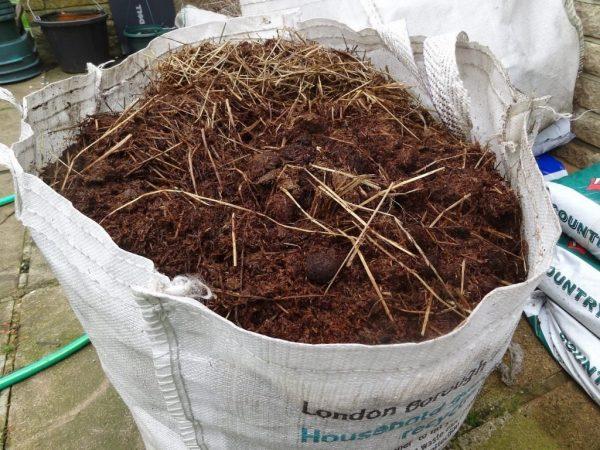 horse-manure-3-1