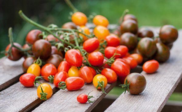 sohranyaem-nadolgo-tomaty-svezhimi-chto-nuzhno-delat-chtoby-tomaty-byli-vsegda-svezhimi-2