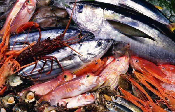 1450486454_seafood_5003