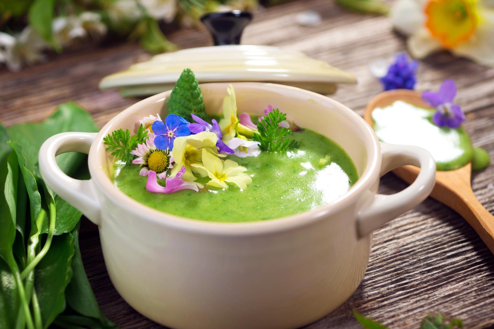 Картинки по запросу Пять рецептов здоровья от щавеля