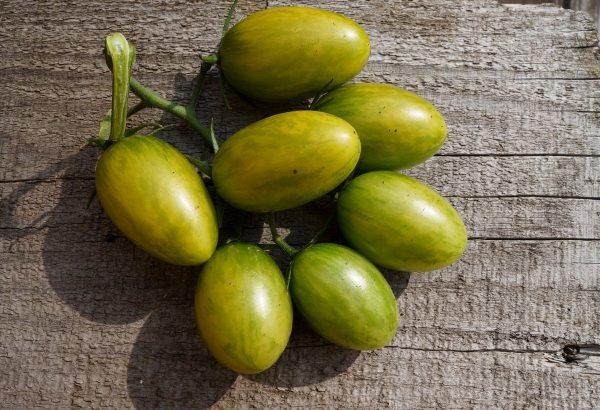 ekzoticheskie-cherri-zelenoplodnye-krasavtsy-u-nas-v-ogorode-vkusno-ili-bespolezno-6