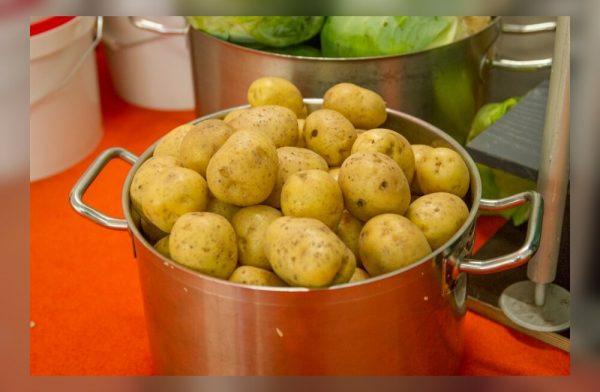 kartul-koogivili-selver-tervis-tervislik-toit-70311533
