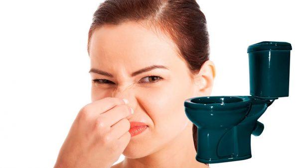 Как убрать запах после посещения туалета? Четыре простых способа удалить запах