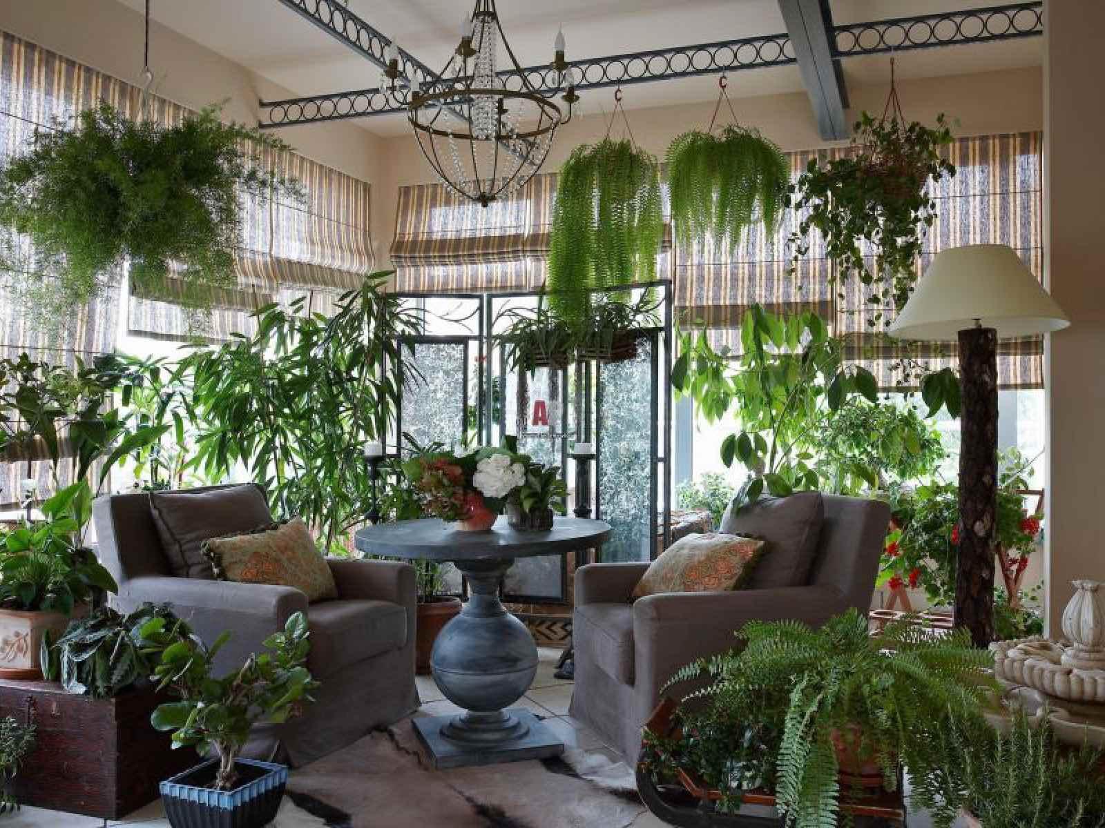 Картинки по запросу Красивый зимний сад в частном доме: фото-идеи и рекомендации по созданию