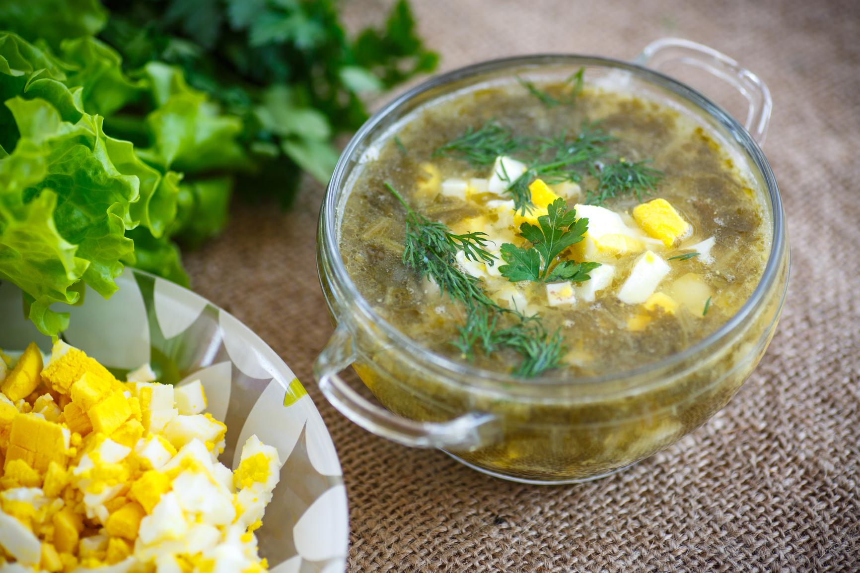 Блюда из щавеля: готовим вкуснейшие зеленые обеды