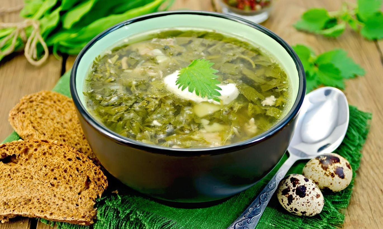 Щавелевый суп: лучший пошаговый рецепт приготовления