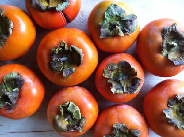186515_aa10650_7e2934a6f3b400f7c146f626bf6ad4d5_fuyu_persimmons