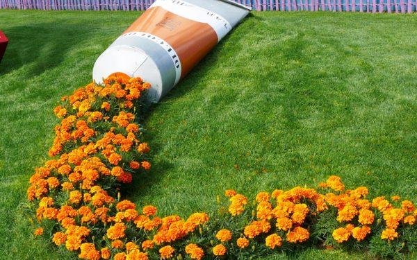 Одиночные клумбы в дизайне сада. Цветники-островки. Фото ...