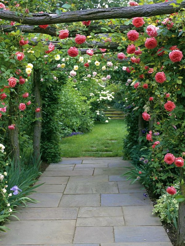 roza-klajming