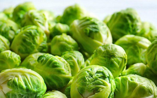 Брюссельская капуста: посев, выращивание и уход | На грядке ...