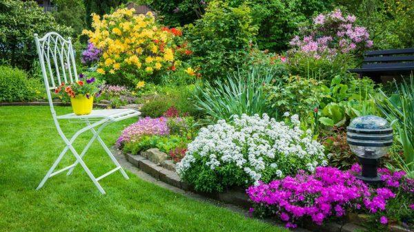 Схемы посадки цветников и клумб из однолетников и многолетников