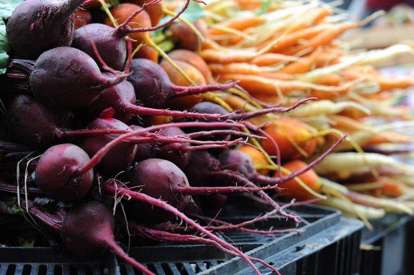 Хранение овощей и фруктов: температура, условия на складах - технология, оборудование и правила