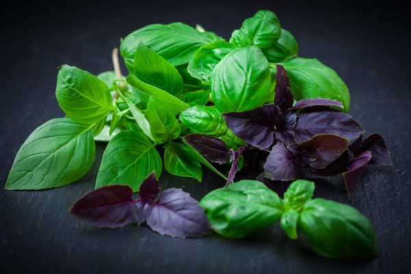 vitaminnyy-sostav-i-nizkokaloriynost-osobenno-tsen-600x400-1
